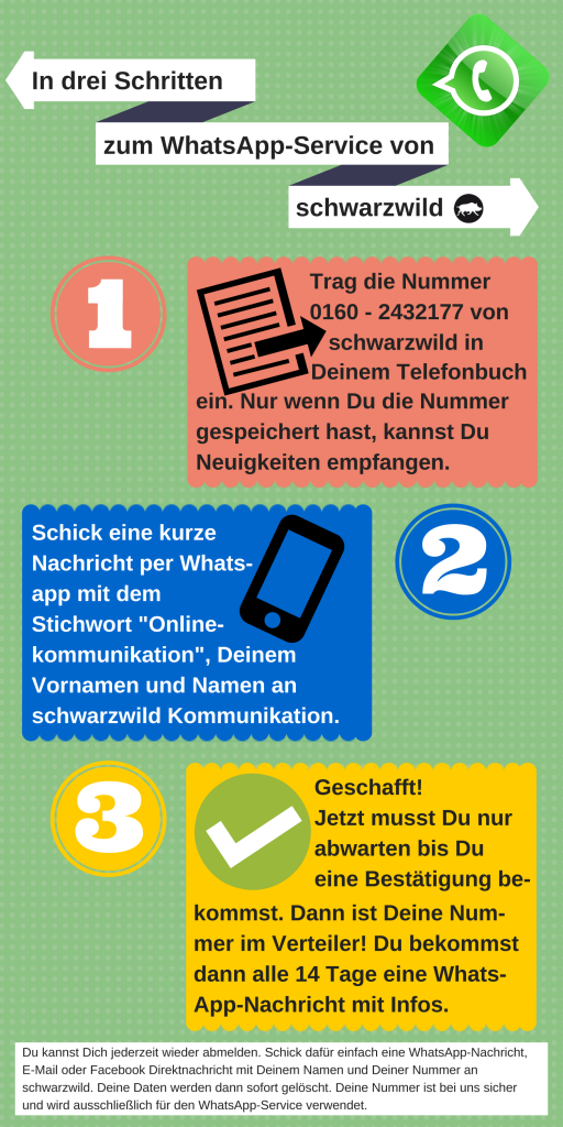 Der WhatsApp-Service. Newsletter per WhatsApp